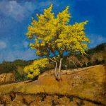 Le Mimosa HST 80x80 - William Fenech