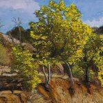 Les Mimosas HST 46x61